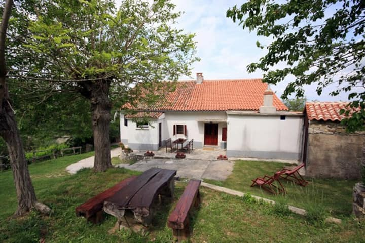 Cottage in green Istria, 4 persons