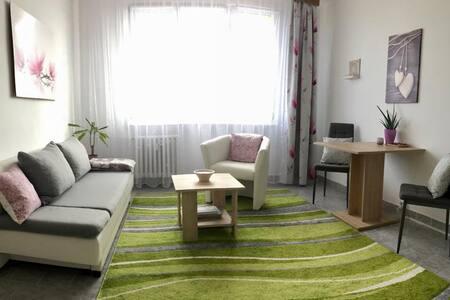Útulný byt s krásným výhledem na Plzeň