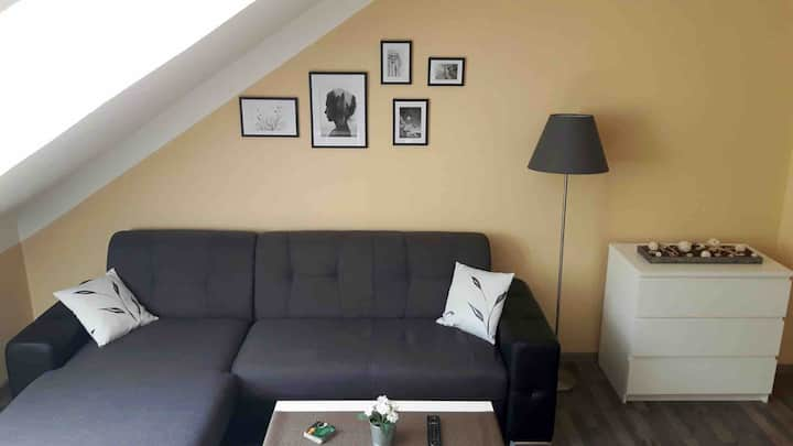 Apartment in Karlovy Vary center!