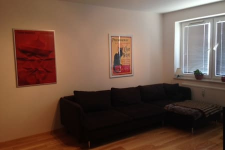 2 rooms+1BD apartment close to city centre - Lublin