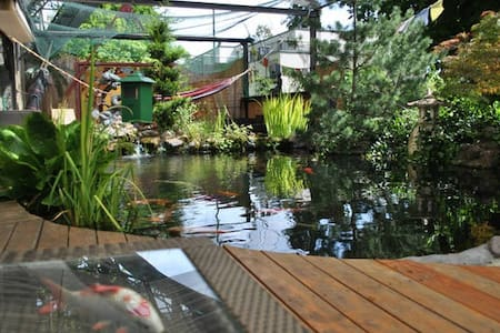Oasis in the city center / 2 - Bern - Haus