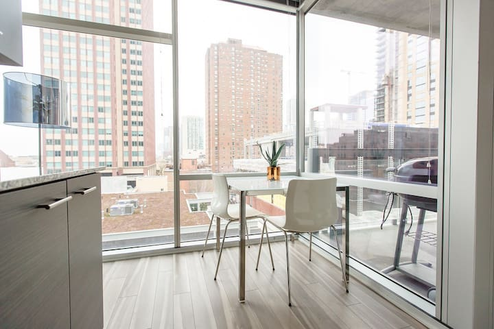 Corner 1BR + Terrace in middle of downtown Chi!