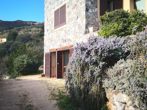 Casa Elicriso, your home on Elba island