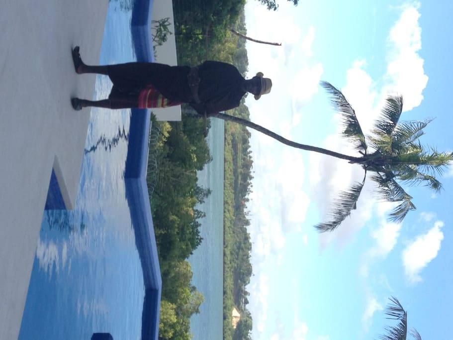 Infinity swimming pool overlooking mangroves