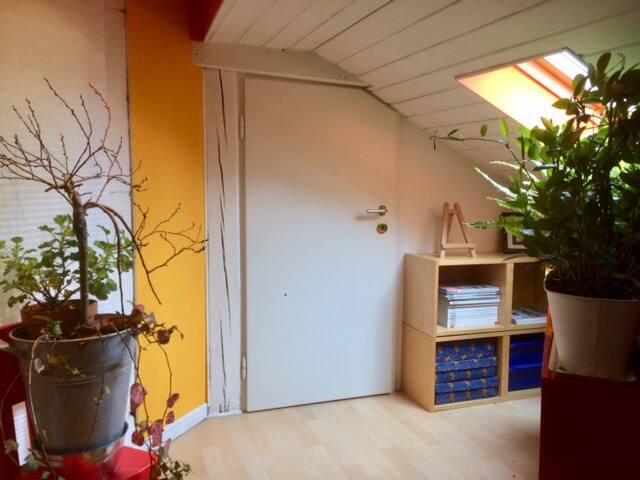 Entrance to the bedroom (entrée vers la chambre sous toit)