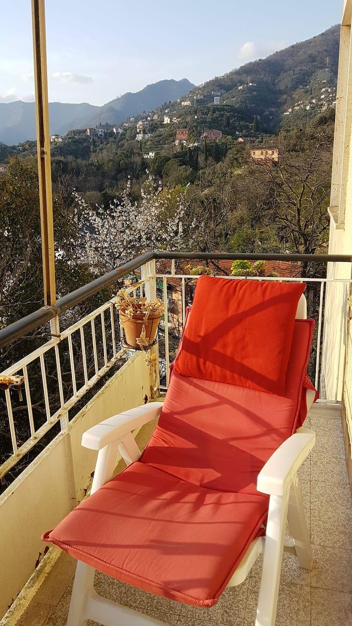 monolocale Rapallo