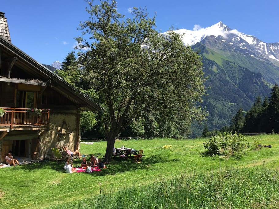 Le jardin et les alpages devant le chalet / The garden and alpine pastures in front of the chalet
