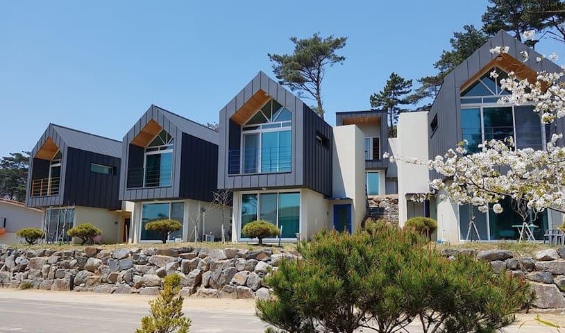 10평형 전경(The view of 10 acreages type house) One house has two rooms.