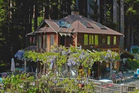 healthy refuge home in the Santa Cruz MT. Redwoods