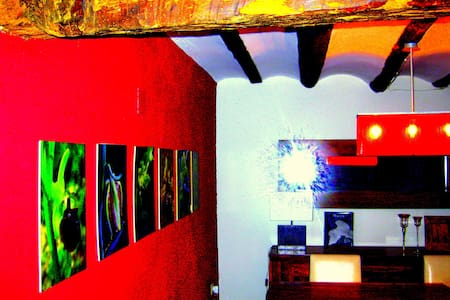 The house of orchids - Morella - Loft