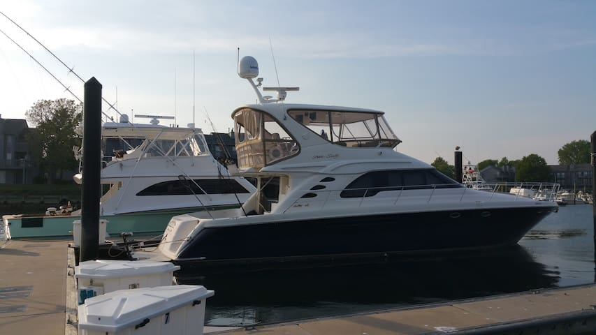 60' Sea Ray for cruising, parties and fishing - Belmar - Boat