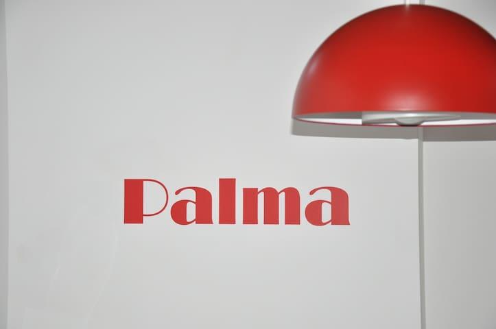 ESTUDIO (1º) EN EL CENTRO HISTÓRICO DE PALMA