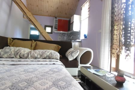 Private House Near DALAMAN Airport - Casa