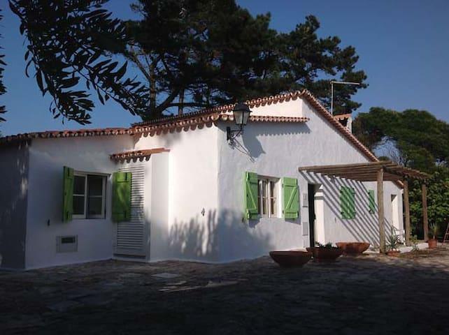 House of the Green Doors - Vau, Óbidos - Villa