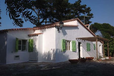 House of the Green Doors - Vau, Óbidos