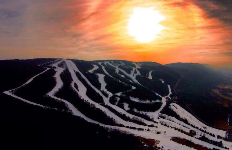 Blue Mountain Ski Chalet @ 3 Little Birds
