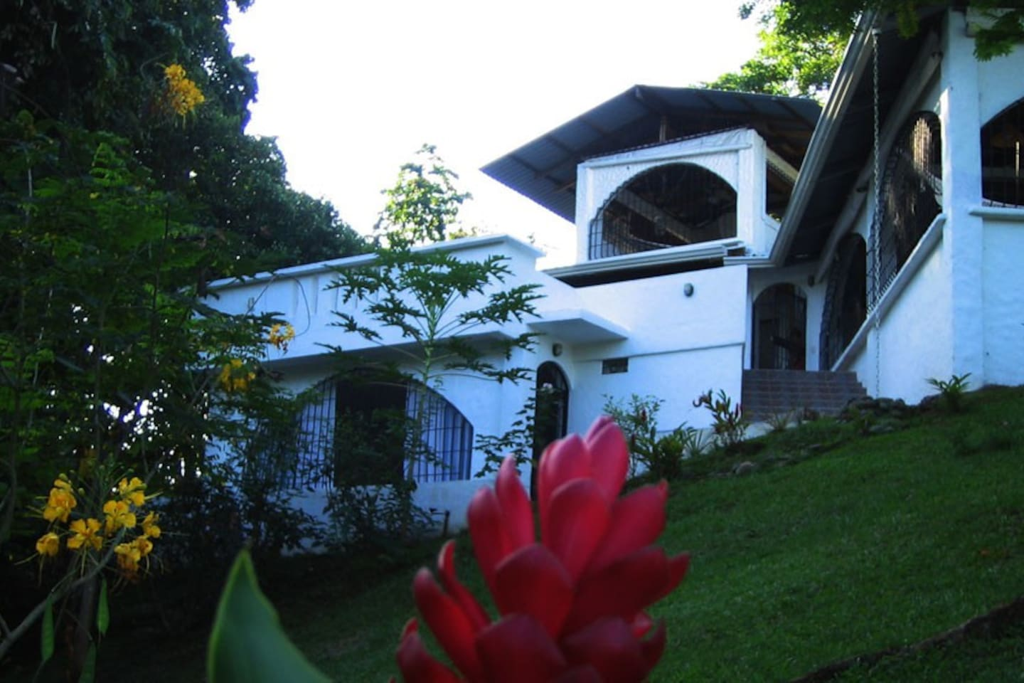 View of the house from the gardens below.