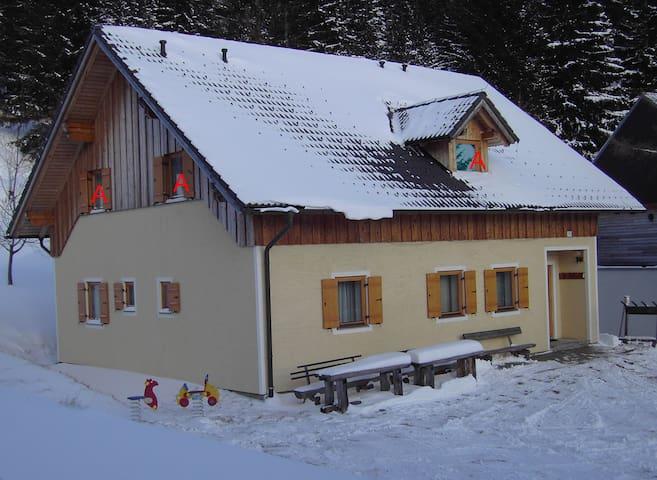 Ferienhaus Sackl Lachtal FW A 55 m2