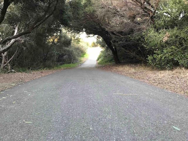 Swan Bay bike/walking path.  Lined with coastal trees and lookouts.  Walk it, run it, ride it during your stay.