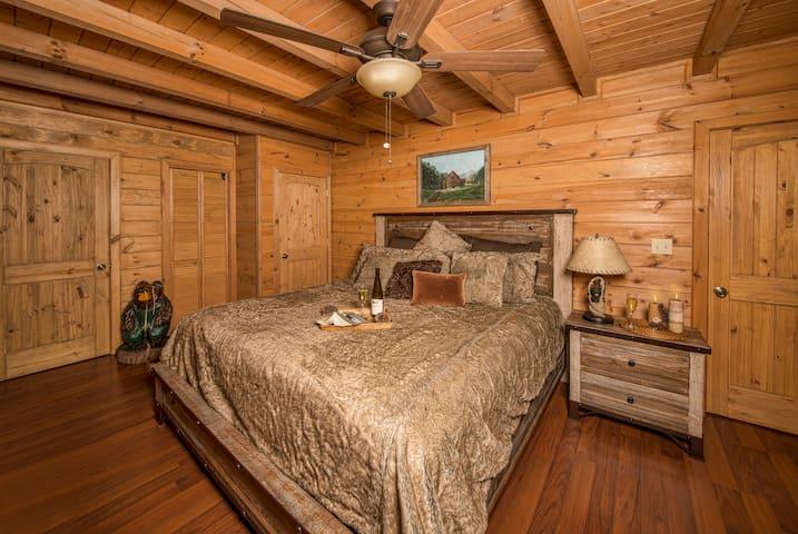 1st Floor Bedroom with walk-in Closet