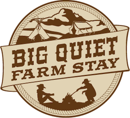 Big Quiet Farm Stay / With Millions of Stars