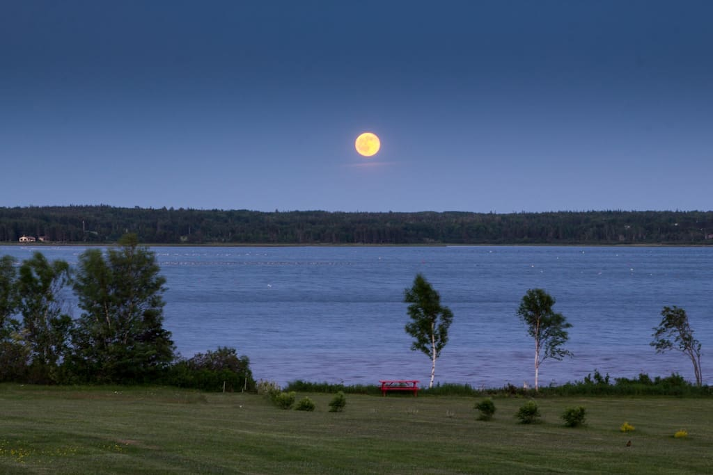 Last Fall's Strawberry moon. The sun rises every morning a little to the left of that. Photo by owner Jenny Neill.