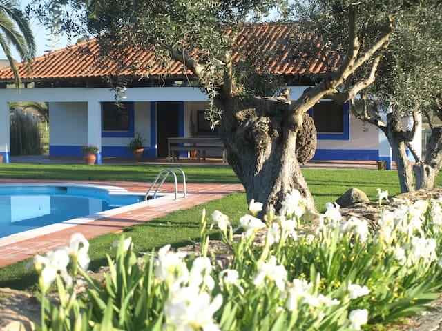 Charming family refuge in Alentejo
