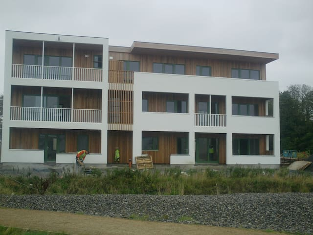 Eco village in centre of Ireland - Cloughjordan - Apartamento