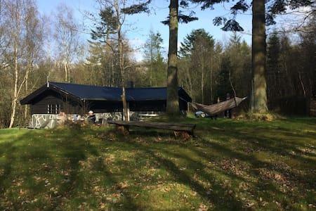 Bjælkehytte midt i skoven - Øjesø Plantage, Gatten - Haus