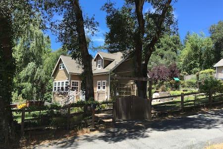 Magical Home in the Santa Cruz Mountains - Ben Lomond