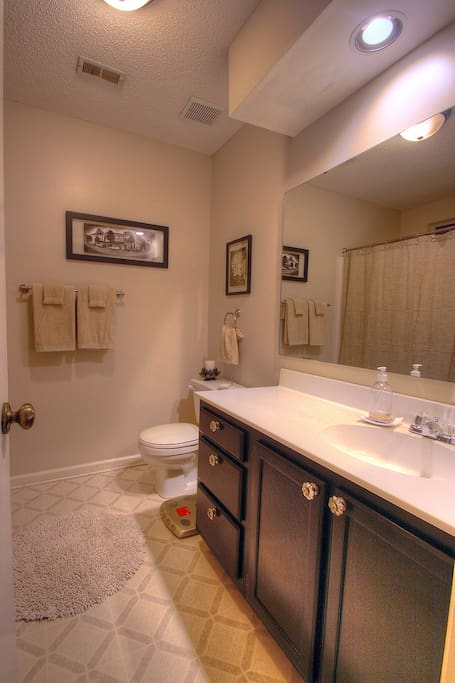Master Bathroom En Suite with Shower/Large Bathtub Combination