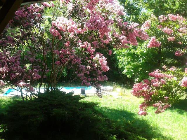Chambre privée avec vue jardin et piscine