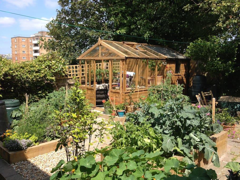 Our peaceful garden