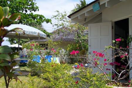 Palm Villa - Duncans Bay, Trelawny  - Duncans - Villa