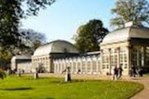 Discover plants and flowers from all around the world in Sheffield's Botanical Gardens