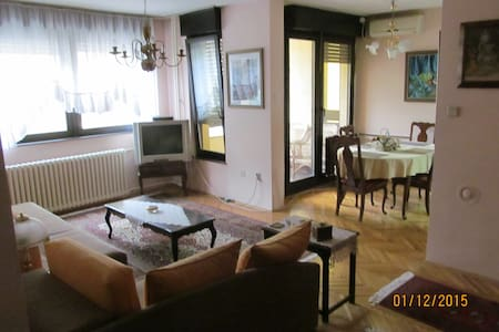 Nice and friendly apartment - Vračar