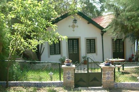 Casa da Geada - Chalet  - Ferreiros de Tendais, Cinfães - Ev
