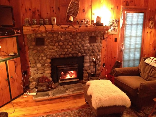 Peaceful Mountain Lake Cabin - Chestertown - Kabin