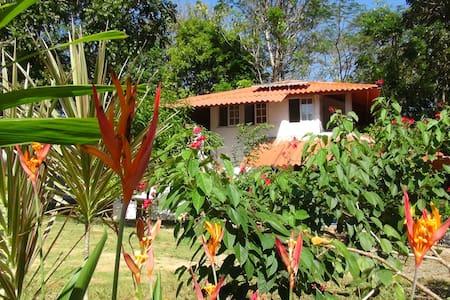 Island Lodge Retreat Cebaco Sunrise/Cebaco Island