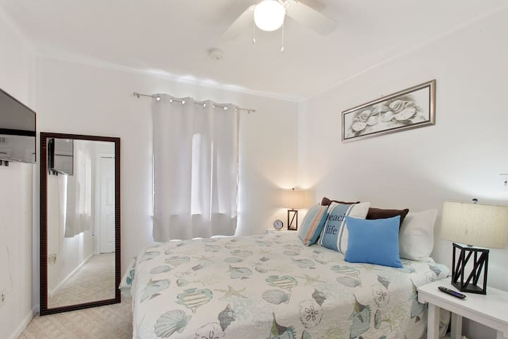Large bedroom with two closets and TV.