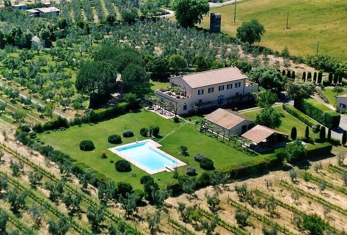 Charming cottage in wine estate - Castagneto Carducci - House
