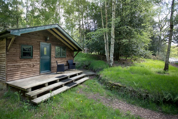 Surrey Hills Woodland Cabin  - Shere - Cottage