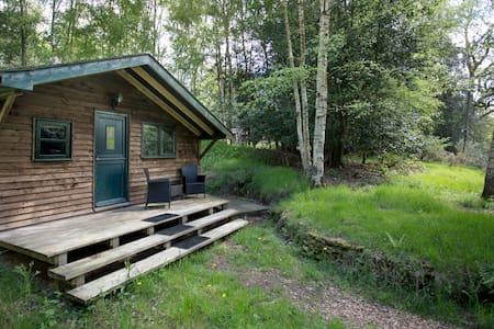 Surrey Hills Woodland Cabin  - Shere