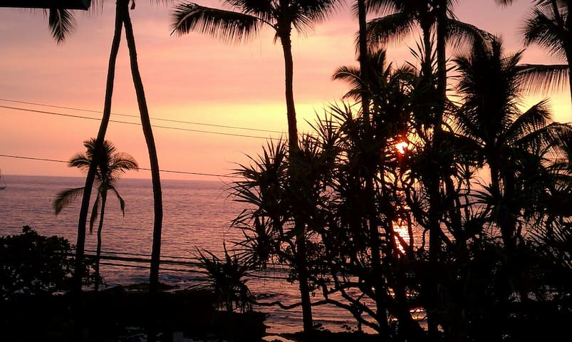 OCEANVIEW, Heart of Kona. Walk to Everything! +tax