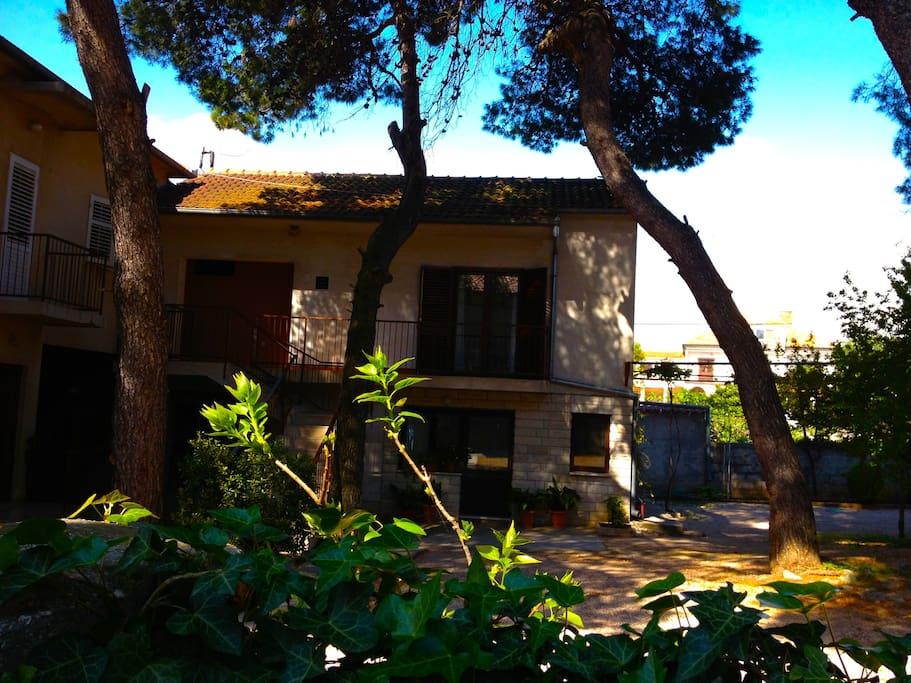 Fenced houseyard safe for kids