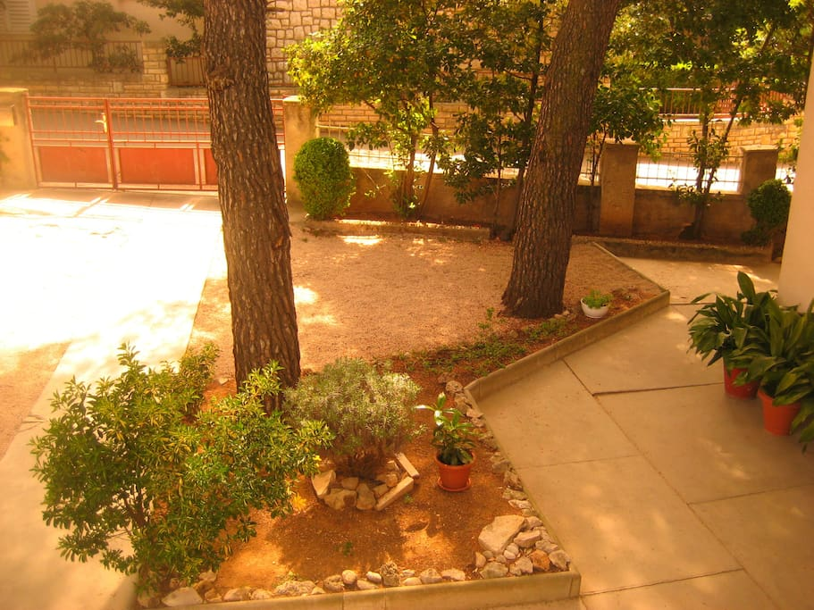 Very large houseyard with lots of plants and flowers perfectly afe for kids