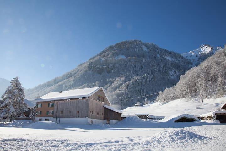 Holzhaus im Alpinen Bregenzerwald 9 Betten - Mellau - House