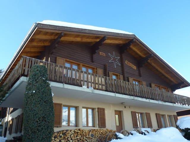 Chalet Erika - Moosalp Ski Area, nr Visp - Unterbäch - Lägenhet
