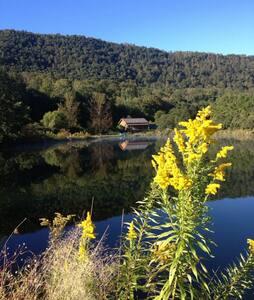 "Catskill Mt. Views ""Onteora"" Loft - Downsville - Mökki"
