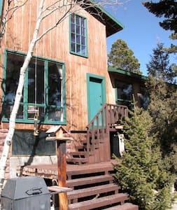 Aspenglow - 3BD rustic cabin - House